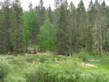 87 Chalk Creek Trail - Photo 33