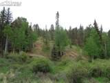 87 Chalk Creek Trail - Photo 34