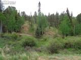 87 Chalk Creek Trail - Photo 35