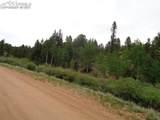 87 Chalk Creek Trail - Photo 36