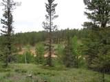 87 Chalk Creek Trail - Photo 4