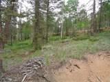87 Chalk Creek Trail - Photo 5