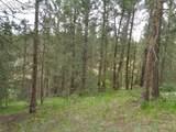87 Chalk Creek Trail - Photo 8