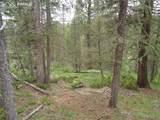 87 Chalk Creek Trail - Photo 9