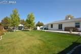 11330 Arshad Drive - Photo 5