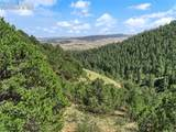 Lot 20 Big Spruce Heights - Photo 15