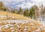 367 Cottonwood Lake Drive - Photo 7