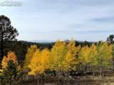 4269 County Road 51 Road - Photo 32
