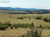 2401 County Road 11 - Photo 4