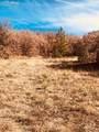 80 Elk Run - Photo 12