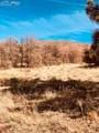 80 Elk Run - Photo 16