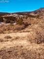 80 Elk Run - Photo 21
