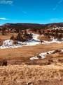 80 Elk Run - Photo 23