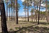 8423 Sanctuary Pine Drive - Photo 1