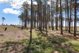 8423 Sanctuary Pine Drive - Photo 10