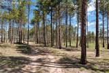 8423 Sanctuary Pine Drive - Photo 3