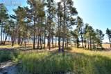 8423 Sanctuary Pine Drive - Photo 4