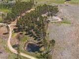8423 Sanctuary Pine Drive - Photo 5