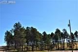 8423 Sanctuary Pine Drive - Photo 6