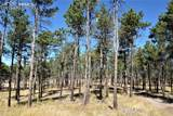 8423 Sanctuary Pine Drive - Photo 7