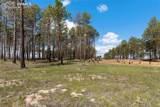 8423 Sanctuary Pine Drive - Photo 9