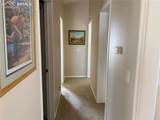 7615 Grizzly Bear Point - Photo 14