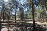 12550 Kenedo Circle - Photo 40