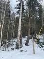 222 Banner Trail - Photo 3