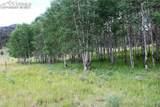 143 Pipeweed - Photo 1