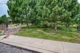 4884 Sanctuary Grove - Photo 50