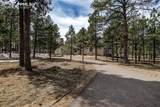 10916 Silver Mountain Point - Photo 48