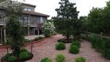 440 Scrub Oak Circle - Photo 47