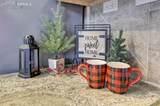 3025 Royal Pine Drive - Photo 15
