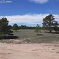 11535 Bison Meadows Court - Photo 3