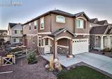 8361 Colorado Spruce Lane - Photo 36
