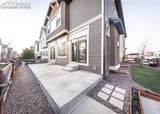 8361 Colorado Spruce Lane - Photo 37