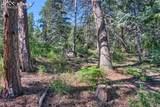 4320 Green Mountain Drive - Photo 11