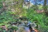 4320 Green Mountain Drive - Photo 15