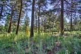 4320 Green Mountain Drive - Photo 23
