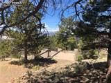 Spring Canyon Ranch Road - Photo 11