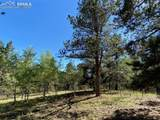 1035 Bison Creek Trail - Photo 12