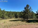 1035 Bison Creek Trail - Photo 13