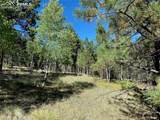 1035 Bison Creek Trail - Photo 2