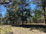 1035 Bison Creek Trail - Photo 3