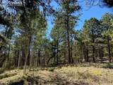 1035 Bison Creek Trail - Photo 5