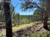 1035 Bison Creek Trail - Photo 7