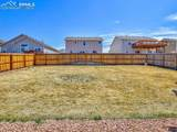 7437 Bigtooth Maple Drive - Photo 47