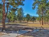 13645 Pinery Drive - Photo 5
