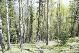 801 Bradley Ranch View - Photo 13