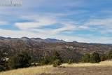 506 Sheep Springs Lane - Photo 8